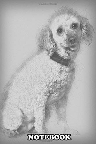 Notebook: Apricot Poodle 7 Years Old Sitting , Journal for Writing, College Ruled Size 6' x 9', 110 Pages