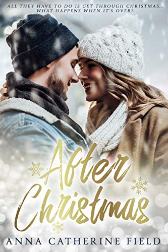 After Christmas: Sweet Contemporary Romance (Haven Island Book 1) (English Edition)